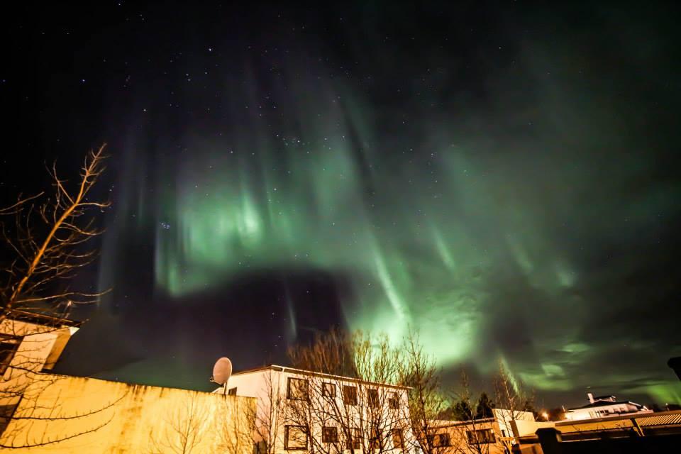 aurora-borealis-iceland-back-garden