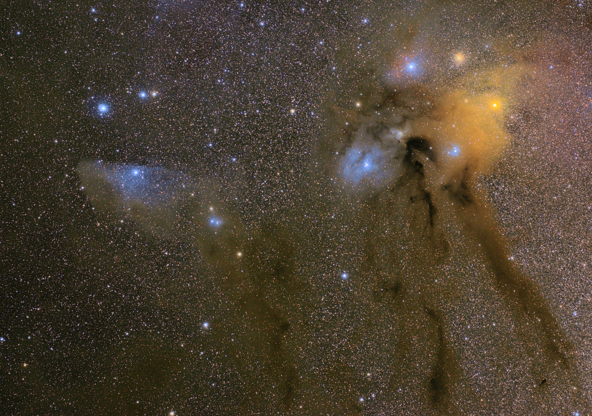 Rho Ophiuchi Cloud Complex and the Blue Horsehead