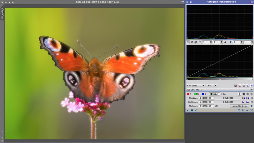 butterfly-histogram