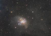 Irregular galaxy NGC 1313