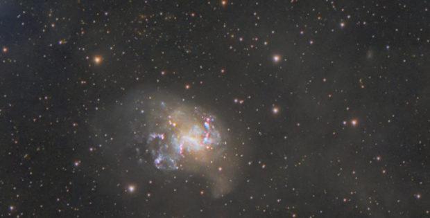 NGC1313